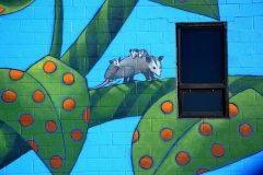 Upper Mural Possums